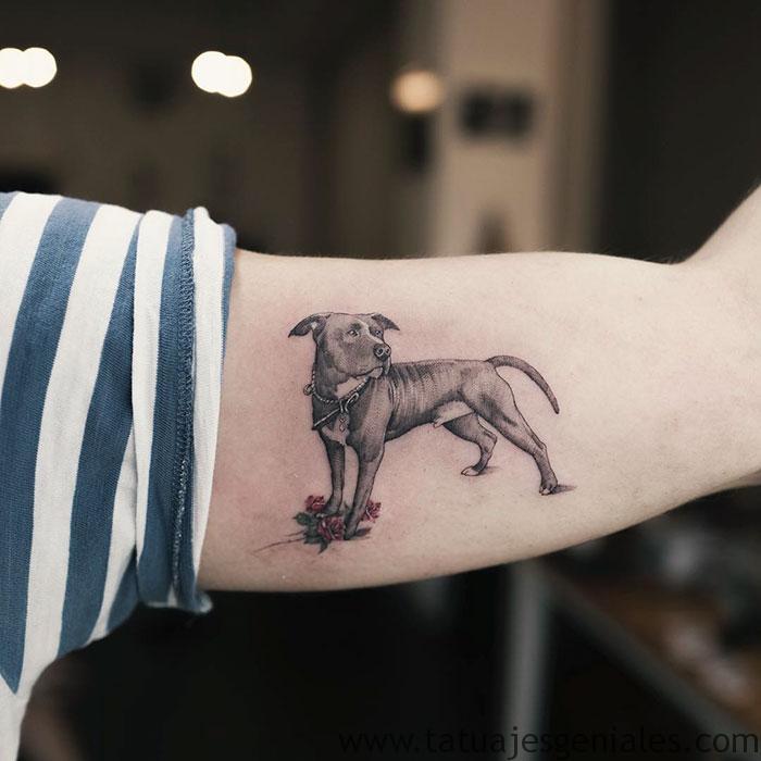 tatouages de chiens 62